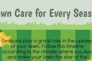 Lawn Care for Every Season Infographic 1